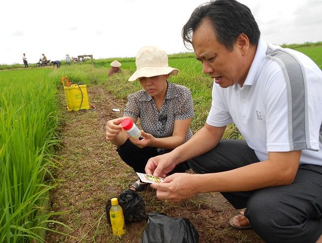 Top 10 Cửa hàng bán thuốc bảo vệ thực vật uy tín tại TPHCM