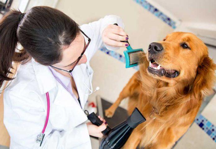 trung tâm thú y uy tín và chất lượng
